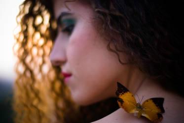 My little butterfly by DeSSiTa