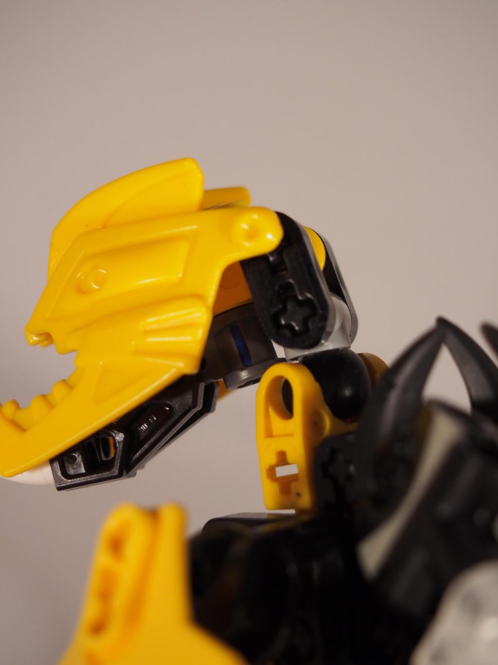 Waspix - Head