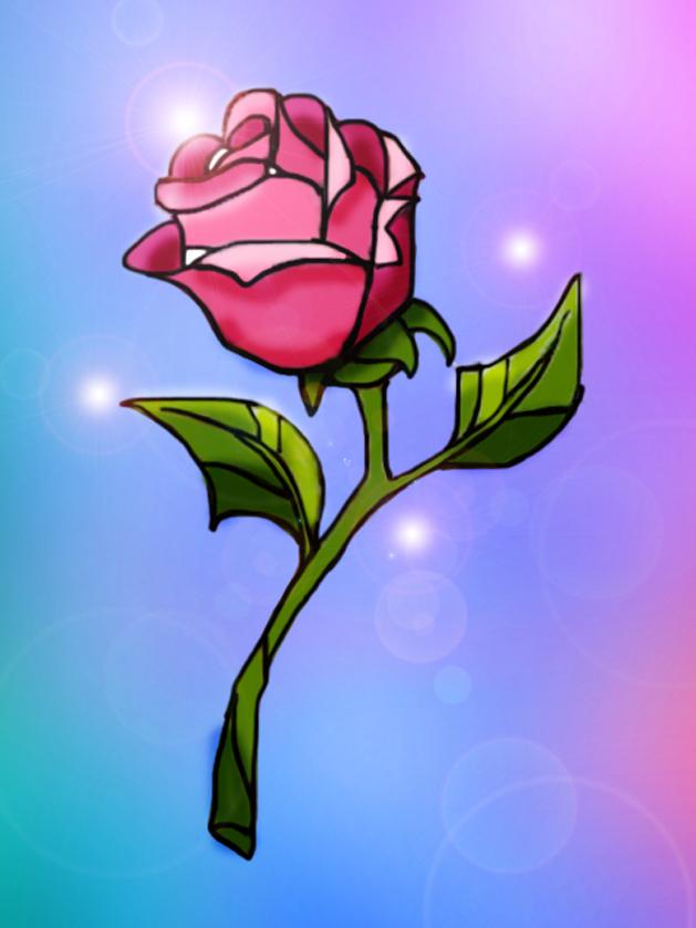 Enchanted Rose Drawing
