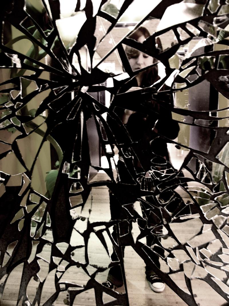 Broken mirror by edwardvanhelgen on deviantart for Broken mirror art
