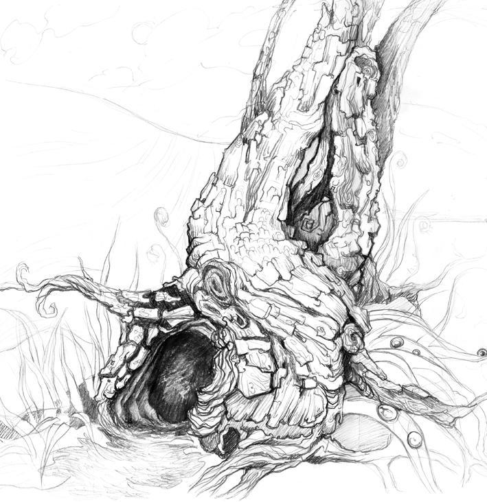 Croquis arbre by marinetumelaire on deviantart - Croquis arbre ...