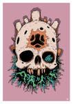 Skull of Bah'Riar