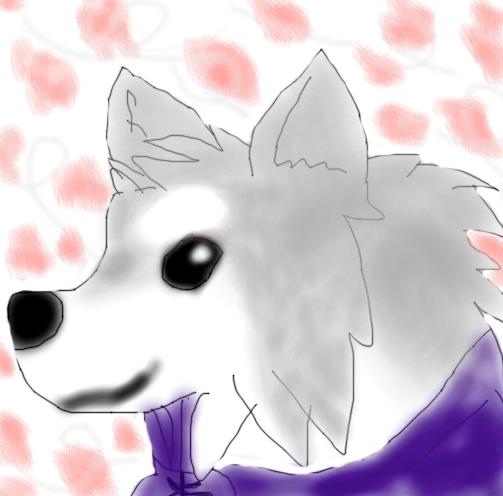 Okami- canine warrior Gi by Goldenfox1704