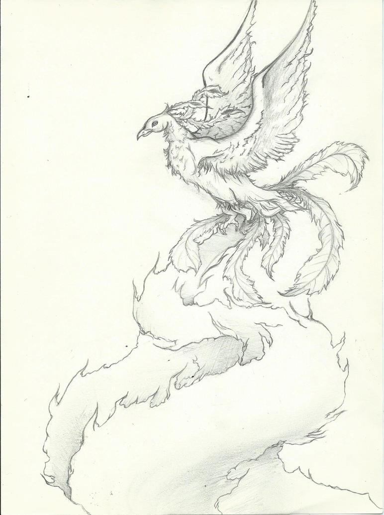 Phoenix Noir Et Blanc by mcirnelle