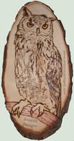 Eagle Owl - Pyrography (Woodburning)