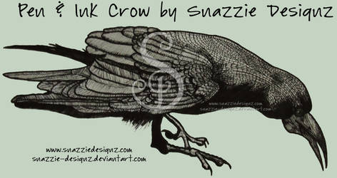 Crow - Pen and Ink by snazzie-designz