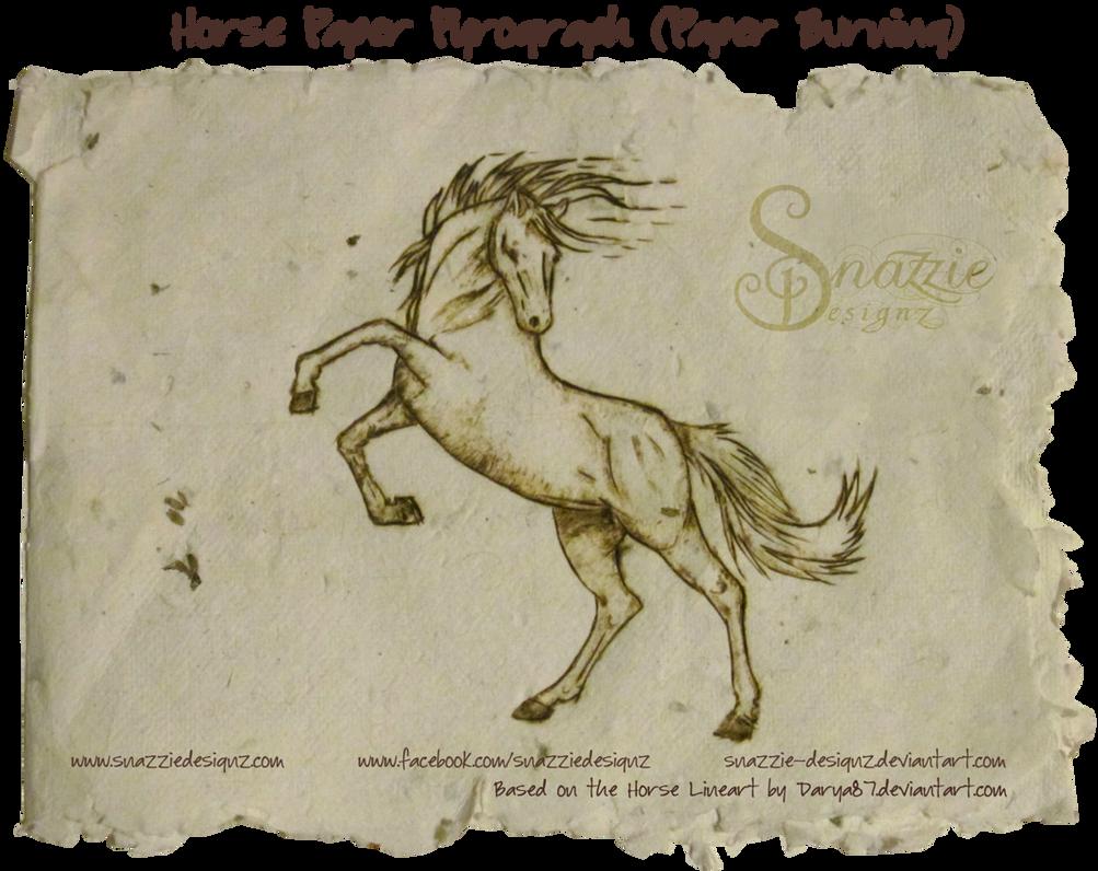 horse essays riding a horse essays