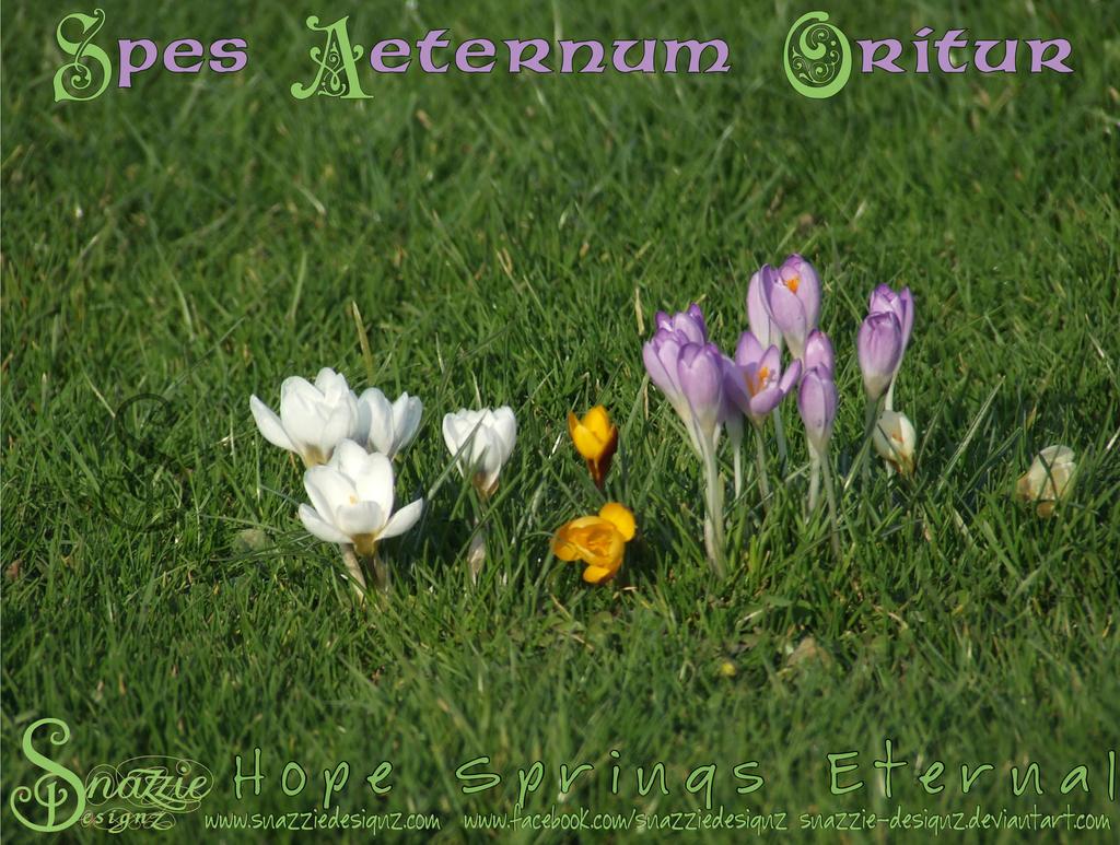 Spes Aeternum Oritur - Hope Springs Eternal by snazzie-designz