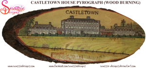 Catletown House Pyrograph Wood Burning