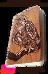Owl Burned Onto Wooden Notebook - Open