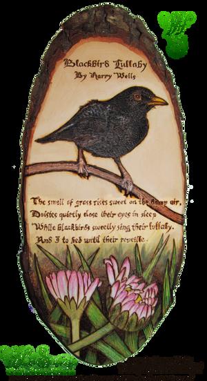 Blackbird Lullaby Pyrograph (Wood Burning) by snazzie-designz
