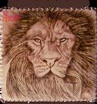 Aslan Box Lid Woodburning Pyrograph W.I.P. by snazzie-designz