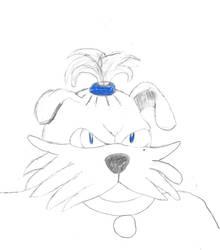 Rover Sheepdog by poseidon777
