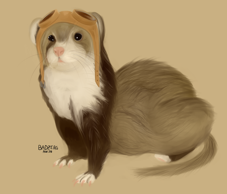 Ferret with aviation goggles by mylittlebadzerg