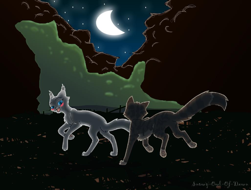 Warrior Cats Snowy Owl Of Dawn