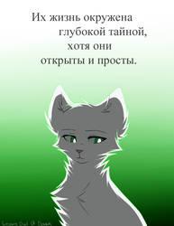 Talkov [Half Moon]