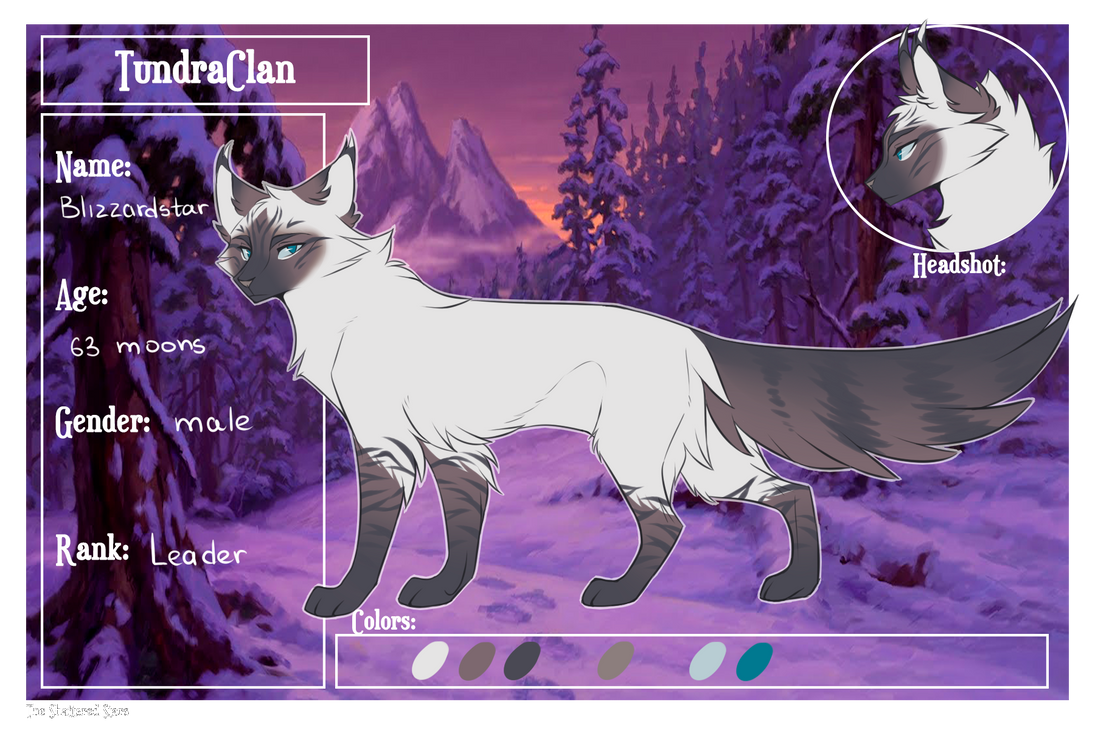 Blizzardstar by Snowy-Owl-Of-Dawn