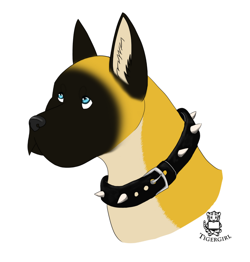 Duke by Tigergirl3