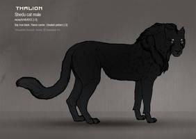Thalion 41 by Templado