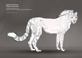 Shedu cat female 110 by Templado