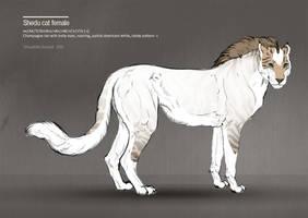 Shedu cat female 336 by Templado