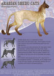 Arabian shedu breeding project