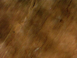Earthy texture