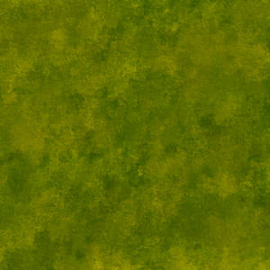 Leather Texture Moss