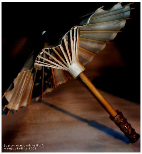 Japanese Umbrella 2