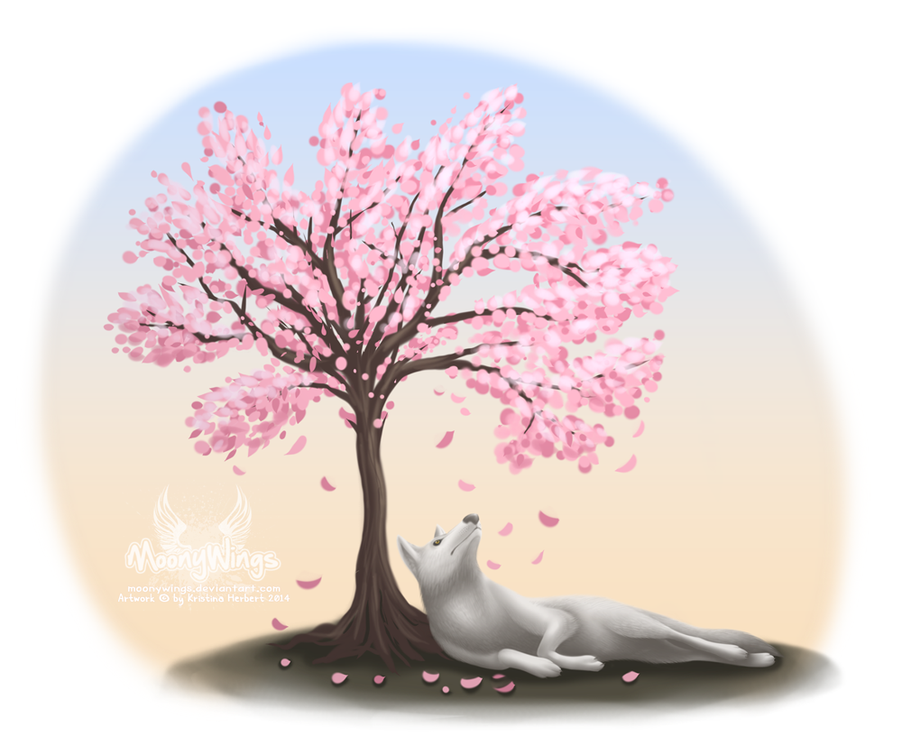 Cherry Blossom Tree - Tattoo Concept by MoonyWings on DeviantArt