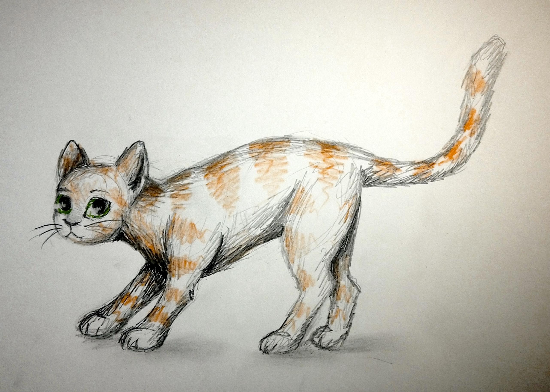 Kot na szybko #1 by RysunkowaSucharia