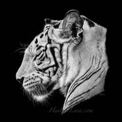 Narmada 1 by Heatherzart