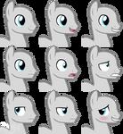 Pony stallion base's expressions