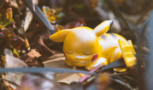 Sunbathing Pikachu