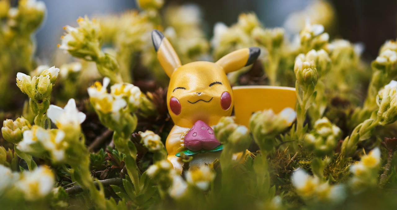 What have you got there, Pikachu?