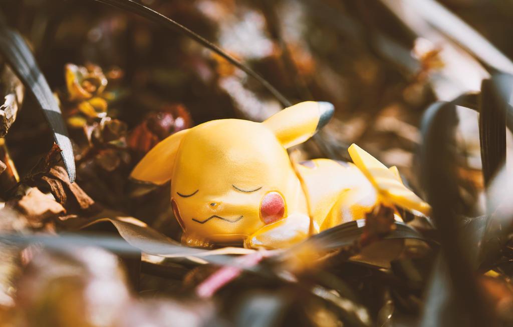 Do Pikachus Dream of Electric Mareep?