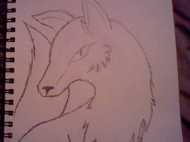 Sketch of a fox by Emperorzeta