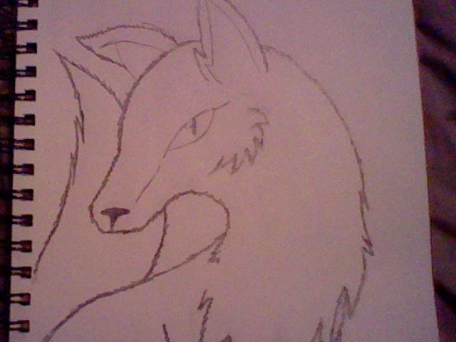 Sketch of a fox by Emperorzeta