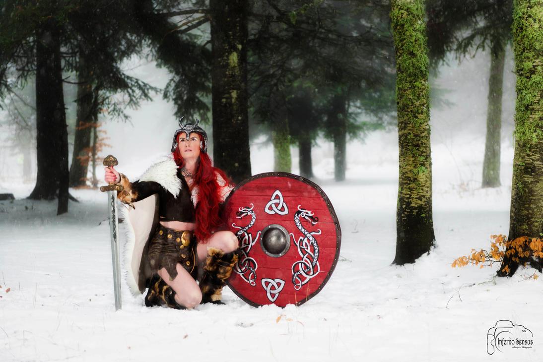 viking 208 by inferno-sensus