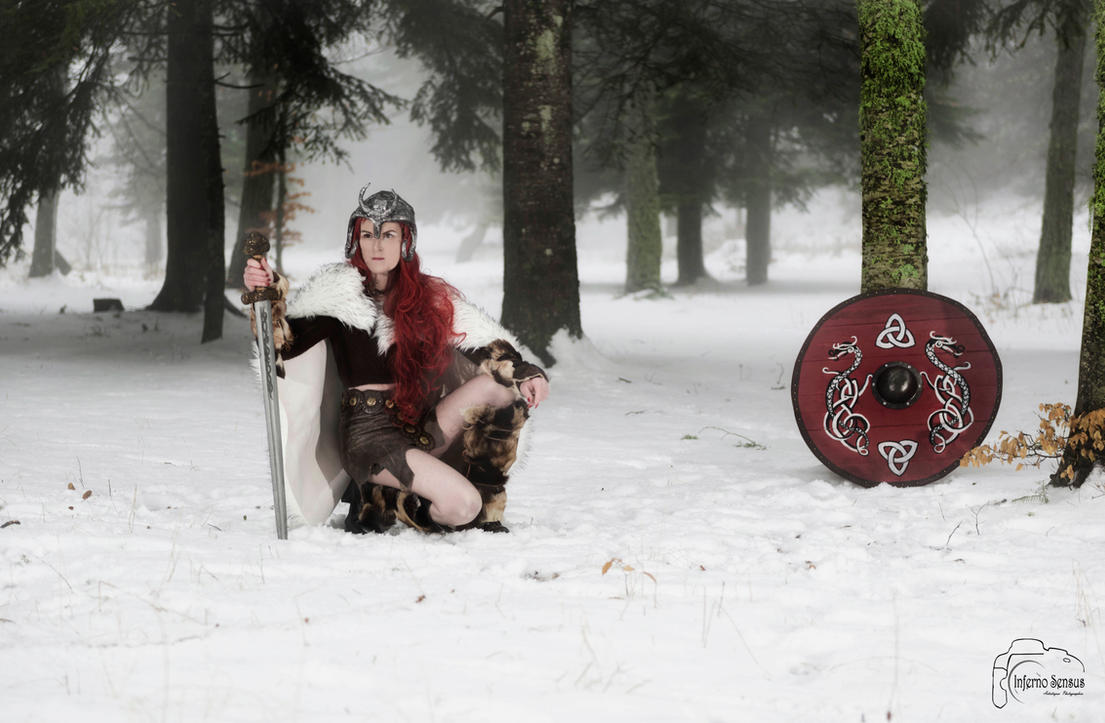 viking 207 by inferno-sensus