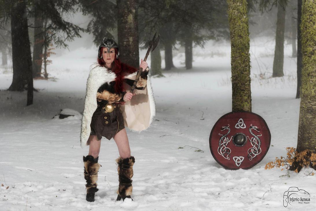 viking 206 by inferno-sensus