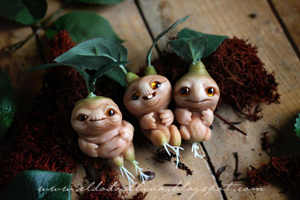 Mandrake roots by dodoalbino