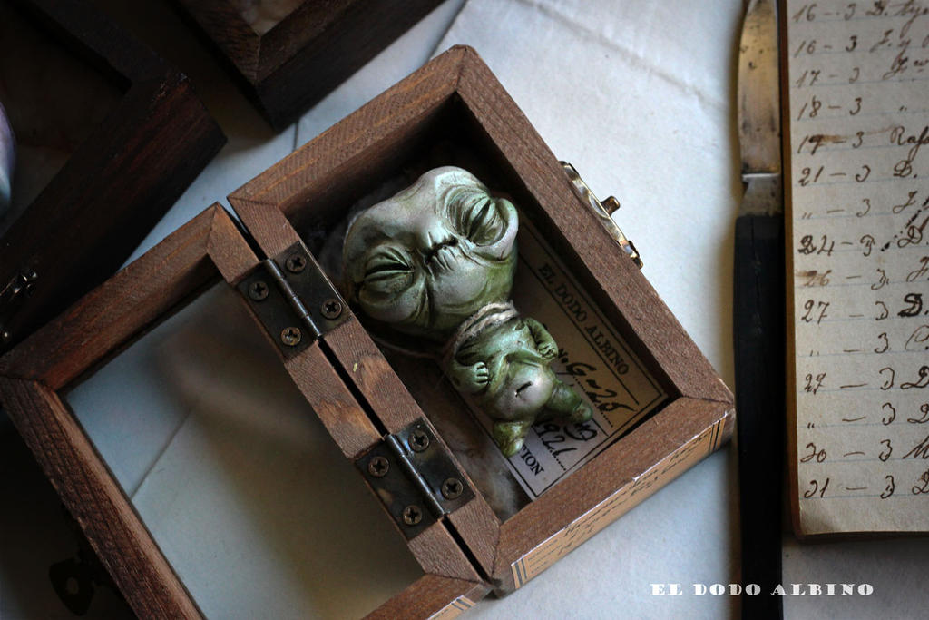 Homunculum hortus, boxed ooak art doll . Gnome. by dodoalbino