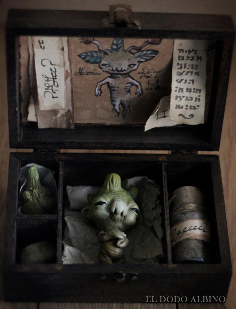 mandrake study box ooak assemblage art by dodoalbino