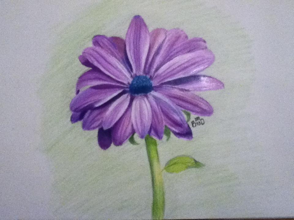 Purple Flower by Miss-Misery13