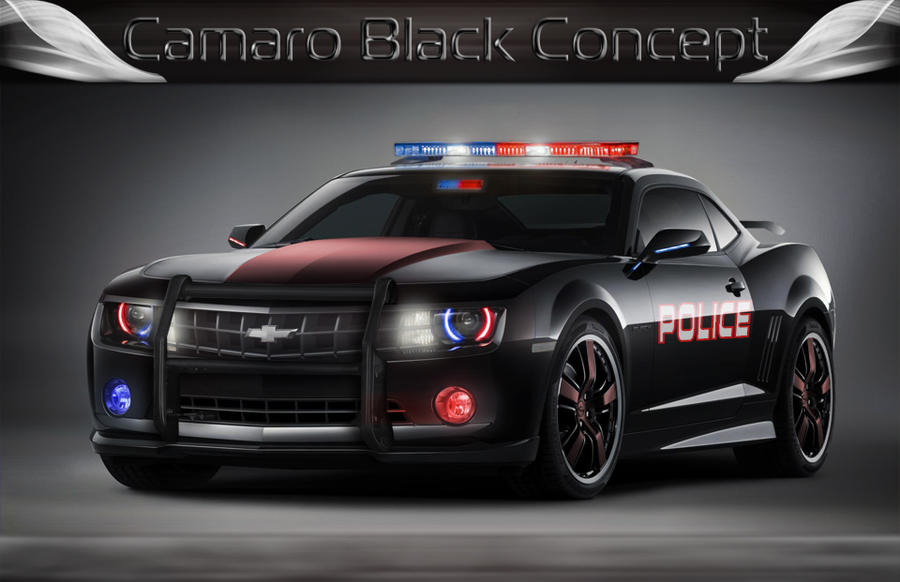 Where To Buy Ex Police Cars