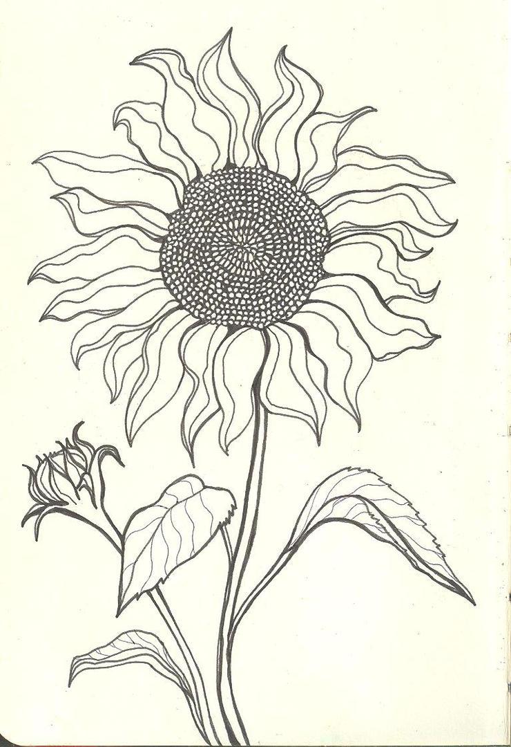 Sad Sunflower by finwion on DeviantArt