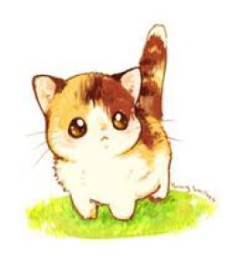 KodokuNoNeko's Profile Picture