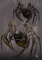 giant spider - gyromancer by kunkka