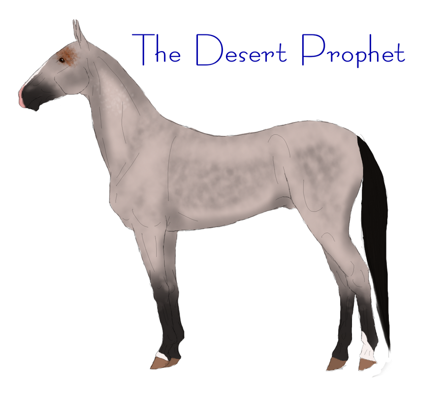 The Desert Prophet-Ref by Secret-Z